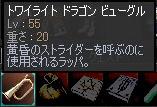 b0025370_20254028.jpg