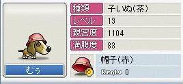 b0060390_126461.jpg