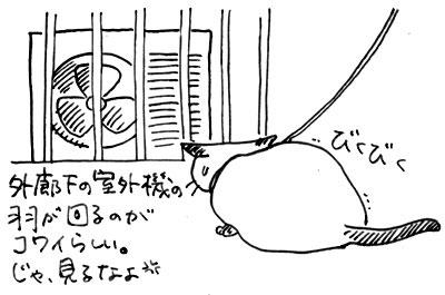 b0028155_19394361.jpg