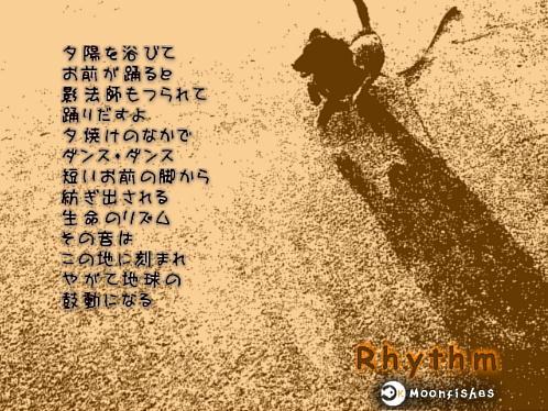 b0048649_0352514.jpg