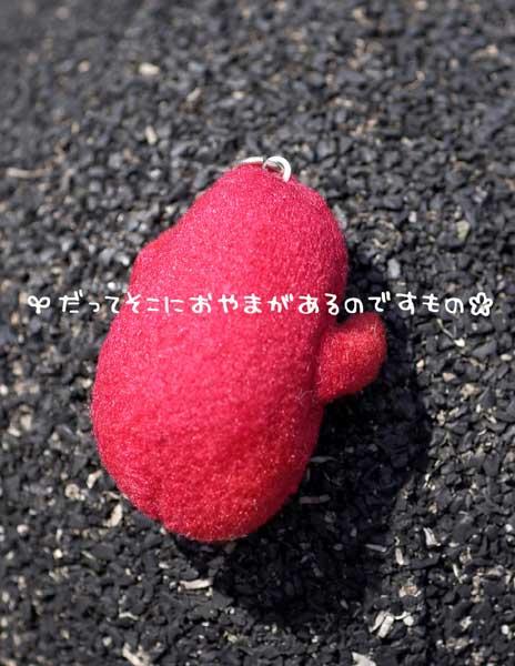 b0046465_1592379.jpg