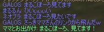 b0046950_118275.jpg
