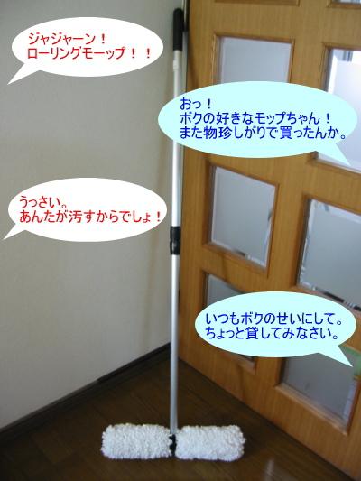 a0015164_872548.jpg