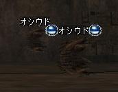 b0025370_1655542.jpg