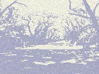 b0028614_2103087.jpg