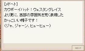 b0035920_947960.jpg
