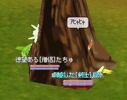 b0021768_159199.jpg