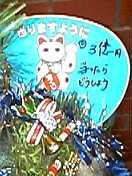 b0019977_013177.jpg