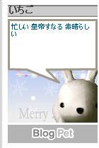 a0010322_1624495.jpg