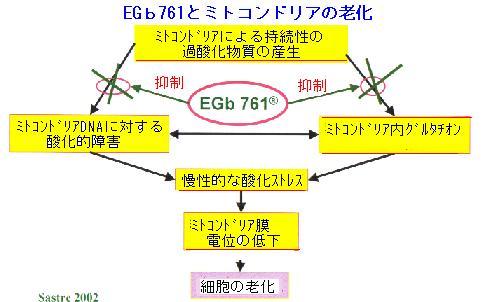 b0035141_16525661.jpg