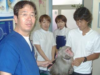 診療動物のご紹介_b0059154_22322743.jpg