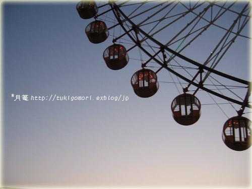 a0019967_1124945.jpg