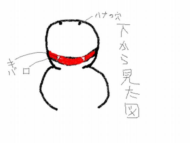 a0003618_1325898.jpg