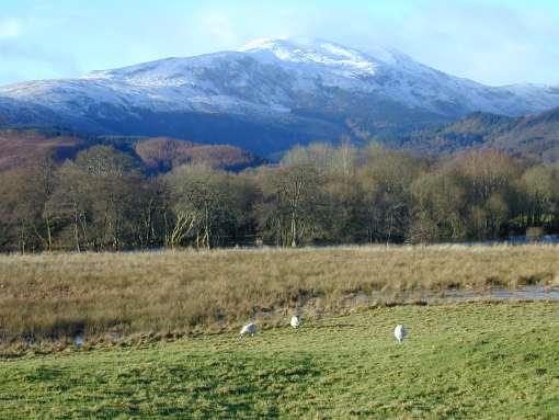 山が白くなりました_a0008516_9434177.jpg