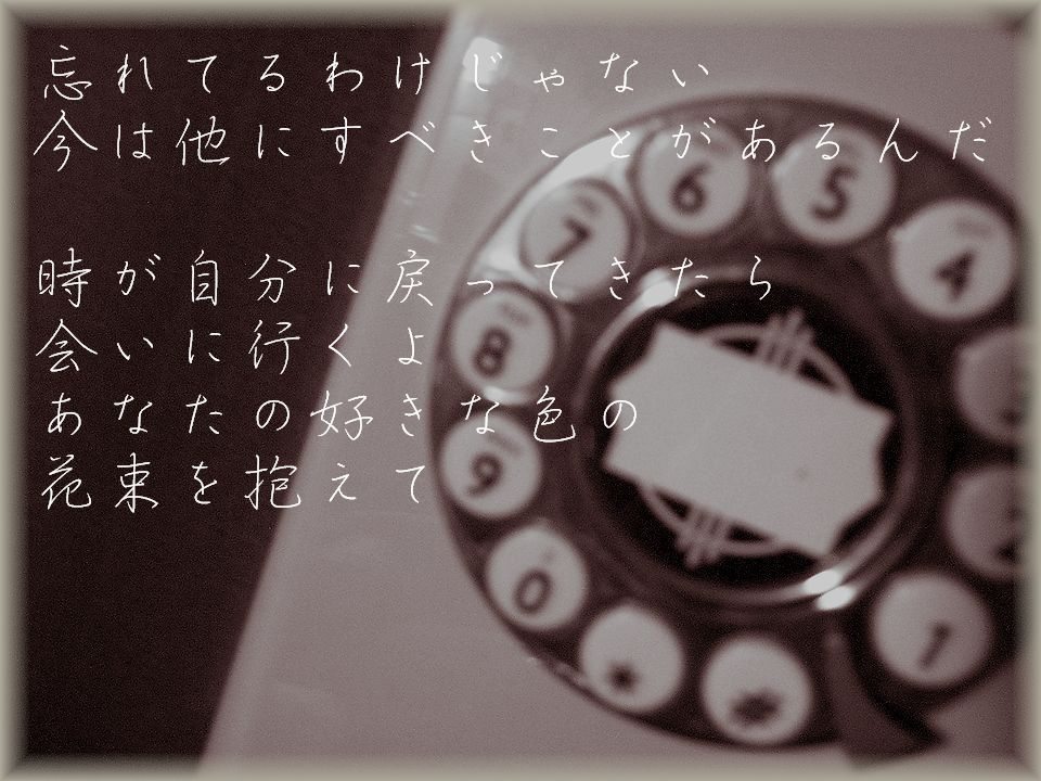 a0036779_1752219.jpg