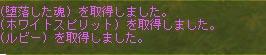 b0021768_6124425.jpg