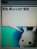 a0013590_0125629.jpg