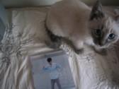 猫の言い分3_c0006826_12555912.jpg