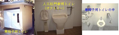b0032422_17104020.jpg