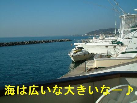 b0069163_14531836.jpg