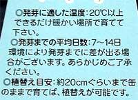 b0016219_20323337.jpg