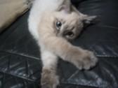 ジオラマ好きさん。カモン!!_c0006826_17422420.jpg