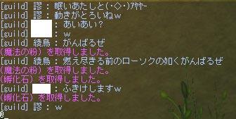 b0021768_102921.jpg