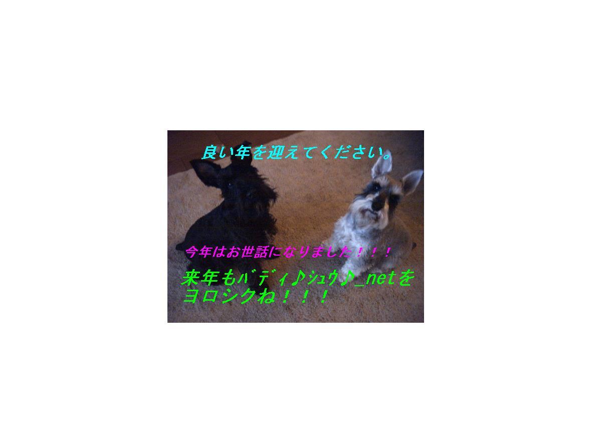 b0046229_12373151.jpg