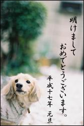 b0016120_1552497.jpg