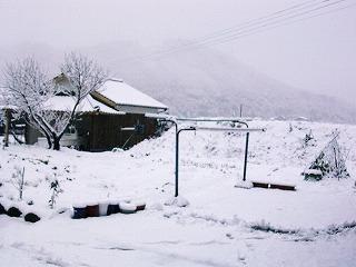 雪の大晦日_b0059154_0245539.jpg