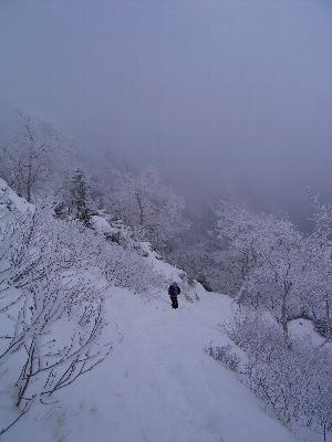 2日目 元旦は八ツ!赤岳登頂だよ。_a0016346_148201.jpg