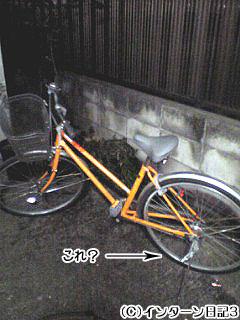 b0061047_17345363.jpg