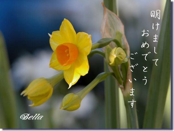 b0000386_1922140.jpg