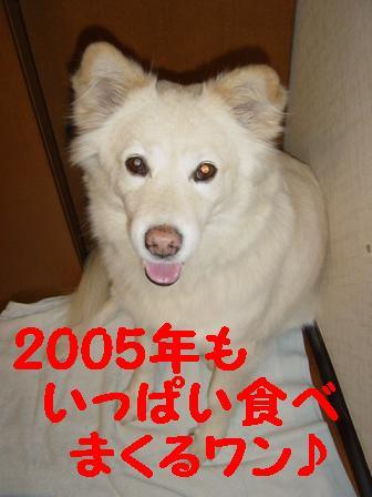 c0021898_22513337.jpg