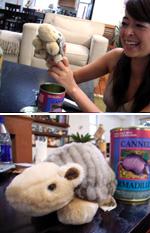缶入アルマジロを食べる?!_b0007805_823195.jpg