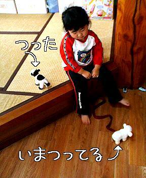 b0047734_77757.jpg