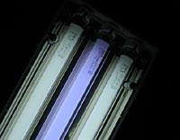 エーハイム3灯式ライトを買った_b0024412_23151184.jpg