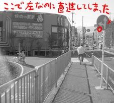 c0023797_8565180.jpg