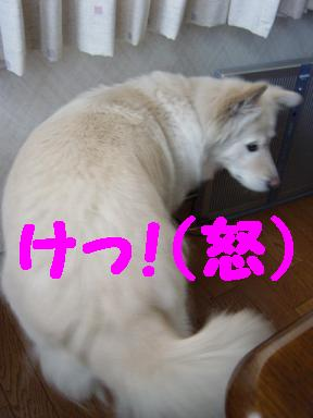 c0021898_18525075.jpg
