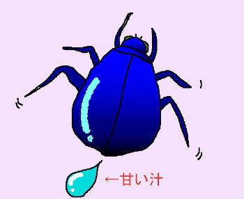 b0015260_2012851.jpg