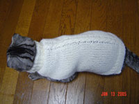動物用だと、セーターといっても、その形は体にフィットしたポンチョのようです。