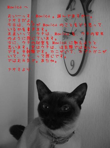 b0034647_19373819.jpg