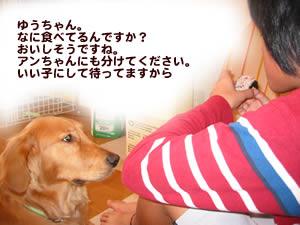 b0015963_055688.jpg