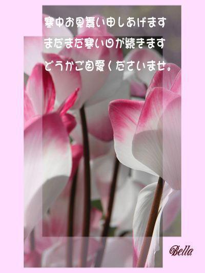 b0000386_734242.jpg