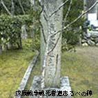 b0009103_14254557.jpg