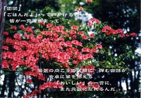 b0044724_11433766.jpg