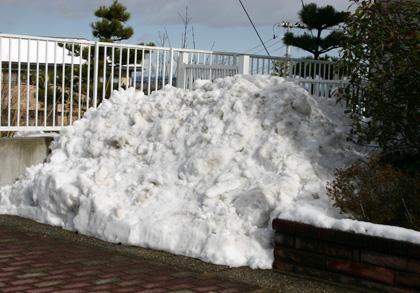 雪が解けてきた!_a0018671_20111166.jpg
