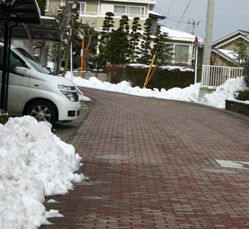 雪が解けてきた!_a0018671_2071260.jpg