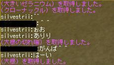 c0024454_1583345.jpg