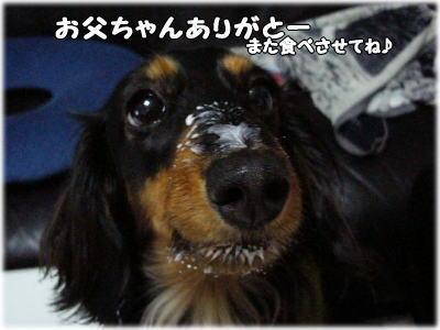 b0016976_1132717.jpg